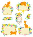 Katten en bloemen Royalty-vrije Stock Foto's