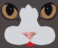 katten eyes s Royaltyfri Illustrationer