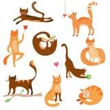 Katten grappige vastgestelde beeldverhalen Stock Afbeelding