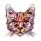 Katten hoofd kleurrijke illustratie stock illustratie