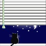 Katten i fönstret som ser månen och stjärnorna Royaltyfria Bilder
