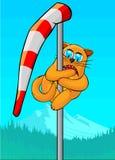 Katten klättrade windsocken Royaltyfria Foton