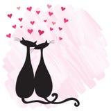 Katten in liefde Royalty-vrije Stock Afbeelding