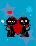 Katten in liefde Stock Afbeelding