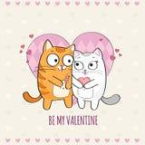Katten in liefde Stock Foto's