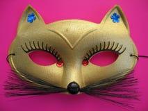 Katten maskerar 1 arkivfoto