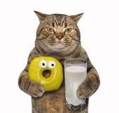 Katten med den gula munken och mjölkar royaltyfri foto