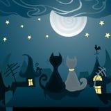 Katten op het dak Stock Afbeelding