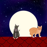 Katten op het dak Stock Afbeeldingen