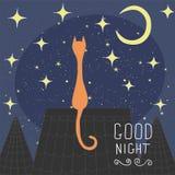 Katten op het dak van de nachtstad Hand getrokken elementen voor uw ontwerpen Stock Foto