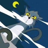Katten ser vatten i natt Arkivbild