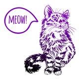 Katten skissar teckningen på brun bakgrund Royaltyfri Fotografi