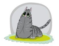 Katten släntrar Royaltyfria Bilder