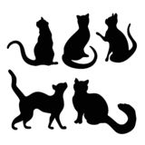 Katten som diagram isolerar skämtsamt, poserar royaltyfri illustrationer