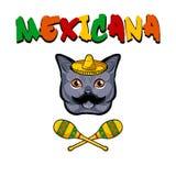 Katten vänder mot Grå katt med sombreron, mustaschen och maracas Mexicana text också vektor för coreldrawillustration vektor illustrationer