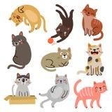 9 katten vectorkaraktersinzameling vector illustratie