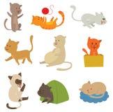 Katten vectorreeks stock illustratie