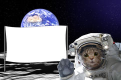 Kattenastronaut op de maan met een banner achter hem, op achtergrond van de bol Royalty-vrije Stock Foto