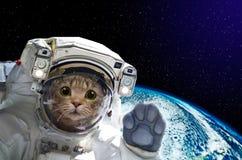 Kattenastronaut in ruimte op achtergrond van de bol stock foto's