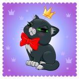 Kattenras Zwart-witte kat Stock Afbeelding