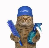 Kattenreinigingsmachine in een blauw GLB stock fotografie