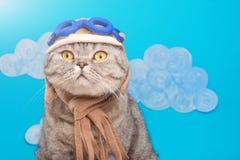 Kattenvliegenier proef, Schotse Whiskas in masker en beschermende brillen proefvliegtuigen Concept de proef, super kat, het vlieg stock afbeeldingen
