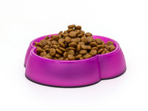Kattenvoedsel in kommen stock fotografie