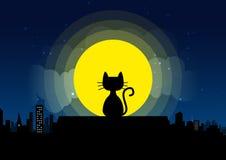 Kattenzitting op een dakachtergrond van het maanlicht Royalty-vrije Stock Foto's