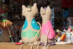 Katter för Ð-¡ otton Arkivfoto