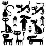 Katter, hundkapplöpning och fisk Arkivbilder