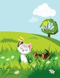 Katter i gräs Arkivfoton