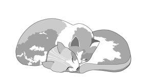 katter little två vektor illustrationer