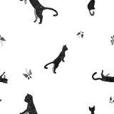 Katter med fjärilar Arkivbild
