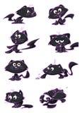 Katter med olika uttryck Arkivbild