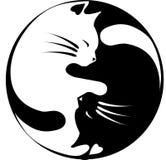 Katter yin-Yang Arkivbild