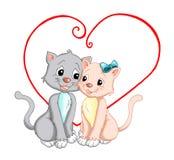 kattförälskelse Arkivfoton