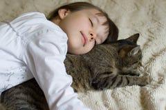 kattflicka henne som kramar Royaltyfri Bild