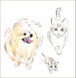 katthund vektor illustrationer