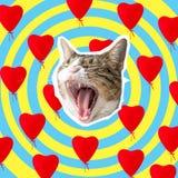 Katthuvud med ljus hjärtacollage, design för begrepp för popkonst Minsta förälskelsebakgrund royaltyfri bild