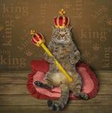 Kattkonung på sängen royaltyfria bilder