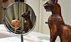 Kattprydnad som reflekterar i spegeln Surrealistisk bild av katten som ser in i spegeln royaltyfria foton