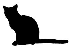 kattsilhouette Fotografering för Bildbyråer