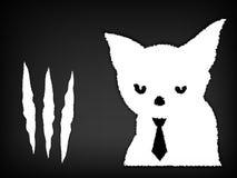 Kattskrapor och sönderrivet papper Fotografering för Bildbyråer