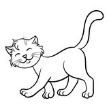 kattungar Arkivbild