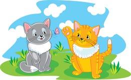 kattungar little två Royaltyfri Bild