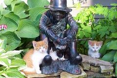 Kattungar och fiske fotografering för bildbyråer