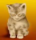 kattunge vektor illustrationer