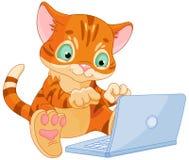 Kattunge med bärbara datorn vektor illustrationer