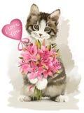 Kattunge med en gåva Arkivbild