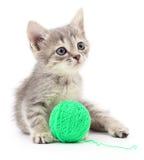 Kattunge med garnnystan Fotografering för Bildbyråer